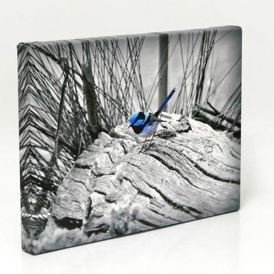 1-Full-Colour-Canvas-Print