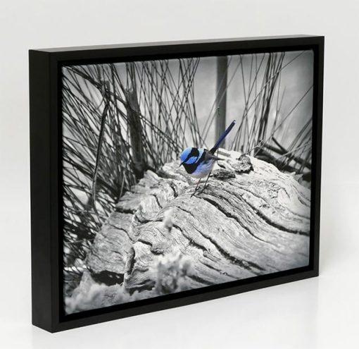floating timber framed canvas