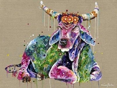 enshrined bovine