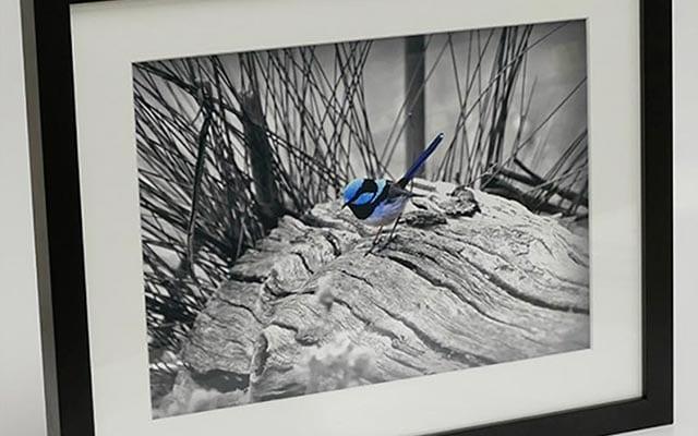 timber framed prints